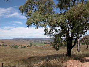 OConnell road NSW