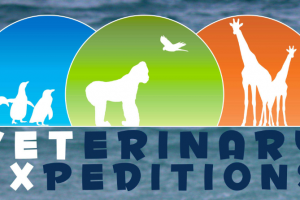 Veterinary Expeditions