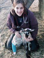 A VeterinaryCareers.com.au interview of Dr Júlia Pásztor