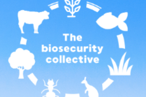 2019 Australian Biosecurity Symposium