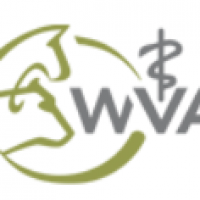 MSD ANIMAL HEALTH/WVA VETERINARY STUDENT SCHOLARSHIP PROGRAM 2020