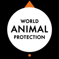 World Animal Protection – PrepVet course