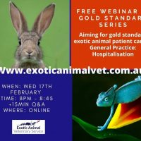 Dr Jayne Weller Gold Standard Exotic Animal Webinar Series: Installment #2 – Hospitalisation